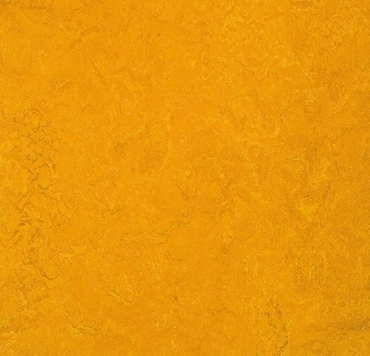 Linoleum Forbo Marmoleum Fresco 2.5mm - 3125 golden sunset auf DeinBoden24.de