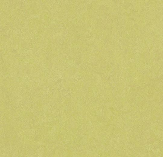 Linoleum Forbo Marmoleum Fresco 2.5mm - 3885 spring buds auf DeinBoden24.de