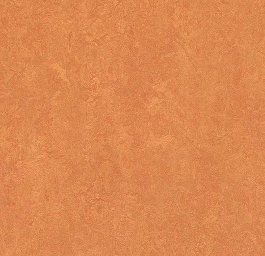Linoleum Forbo Marmoleum Fresco 2.5mm - 3825 African desert auf DeinBoden24.de