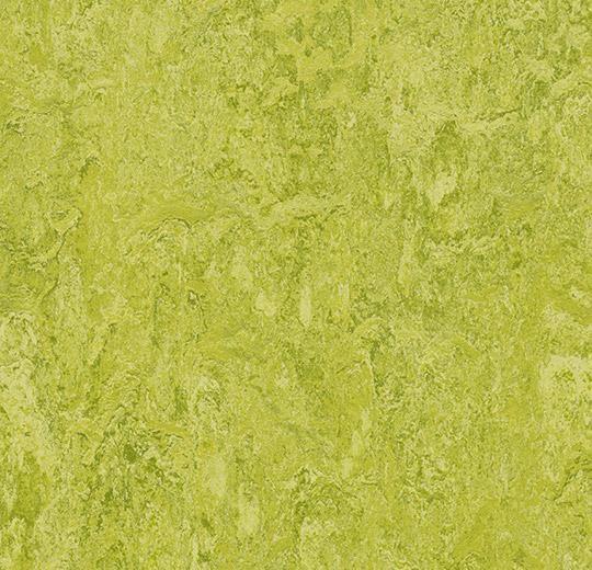 Linoleum Forbo Marmoleum Real 2.5mm - Farbe: 3224 chartreuse auf DeinBoden24.de