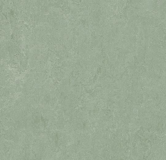 Linoleum Forbo Marmoleum Fresco 2.5mm - 3891 sage auf DeinBoden24.de