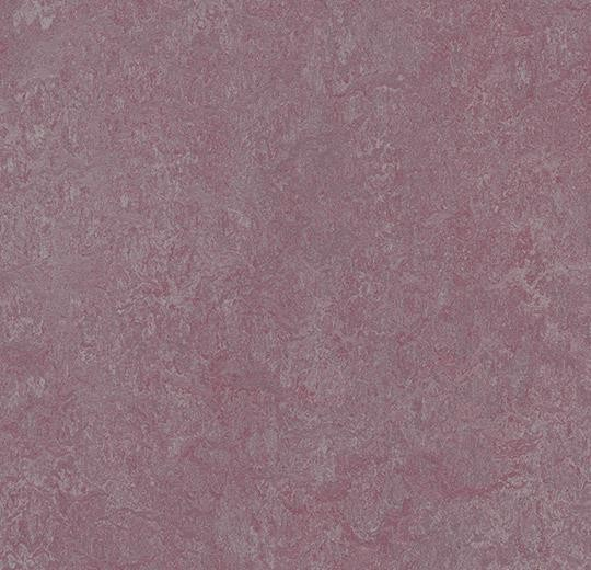 Linoleum Forbo Marmoleum Real 2.5mm - Farbe: 3272 plum auf DeinBoden24.de